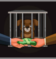 businessman selling puppy wildlife trade illegal vector image vector image