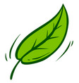 cartoon green leaf with branch icon vector image vector image