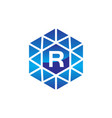 diamond initial r vector image