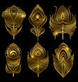 golden feathers isolated on black vector image vector image