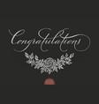 Hand drawn lettering congratulations elegant vector image