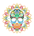 Skull and Sun Flower vector image