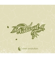 vintage green background with the words Natural vector image