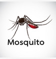 a mosquito design on white background insect vector image
