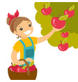 a white woman collects apples from an apple tree vector image