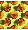 Cartoon Pumpkin Seamless Pattern vector image