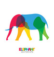 creative elephant animal design vector image vector image