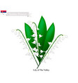 lily of the valley the national flower of serbia vector image vector image