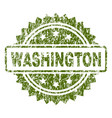 scratched textured washington stamp seal vector image