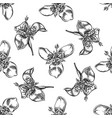 seamless pattern with black and white tigridia vector image vector image
