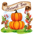 watercolor pumpkins on a fall background vector image