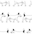 background walking lap dogs vector image