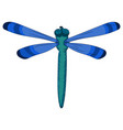 bright blue dragonfly child s drawing vector image