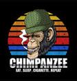 chimpanzee smoke retro vector image vector image