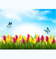 nature background with green grass flowers and a vector image vector image