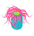 sea anemone icon bright natural underwater coral vector image vector image
