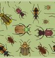 set beetle pattern vector image