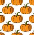 Sketch pumpkin in vintage style vector image vector image