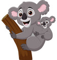 cartoon mother koala and baon a tree branch vector image vector image