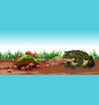nature scene with toad and ants vector image vector image