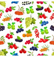 seamless pattern with cartoon berries vector image