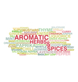 Variety of aromatic herbs and spices vector image vector image