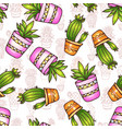 cactus and succulents seamless pattern vector image