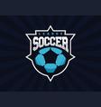 modern professional soccer logo for sport team vector image