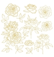 Set of one-colored outlined roses vector image vector image