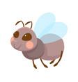 cute grey smiling flying ant on white background vector image