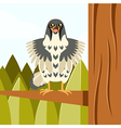 Happy Falcon on the Tree flat background vector image vector image