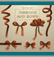 ribbons and bows set vector image vector image