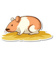 sticker design with cute hamster isolated vector image vector image