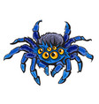 cartoon spider vector image vector image