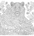grizzly bear adult coloring page vector image vector image