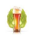 hop plant and elegant glass of beer 3d icon vector image