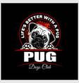 pug - for t-shirt logo vector image vector image