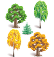 trees in seasons vector image vector image