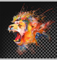watercolor painting roaring lion transparent on vector image vector image