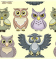pattern of color owls vector image