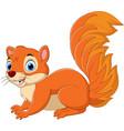 cartoon funny squirrel isolated vector image vector image