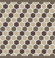gray hexagon geometric pattern vector image