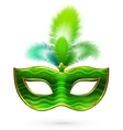 Green carnival mask with feathers vector image vector image