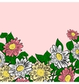hand-drawn colorful flowers vector image