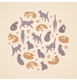 Isometric flat cats set vector image