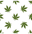seamless pattern green cannabis leaves on a vector image