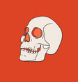 skull isolated on red background vector image