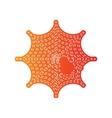 Spider on web Orange applique vector image vector image