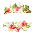 tropical flowers elements vector image