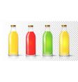 glass juice bottle colored packaging set vector image